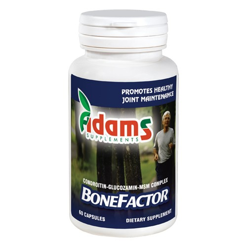 Bonefactor Gs / Condroitin / Msm 60cps Adams Supplements