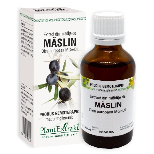Extract Mladite Maslin, 50ml, Plantextract vitamix poza
